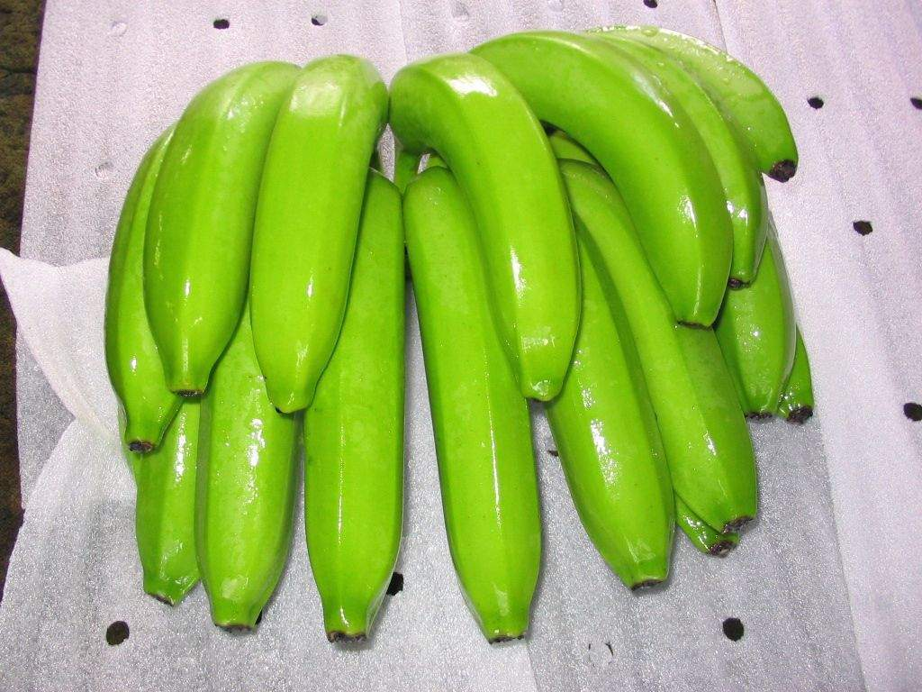 Green banana vegetables pictures