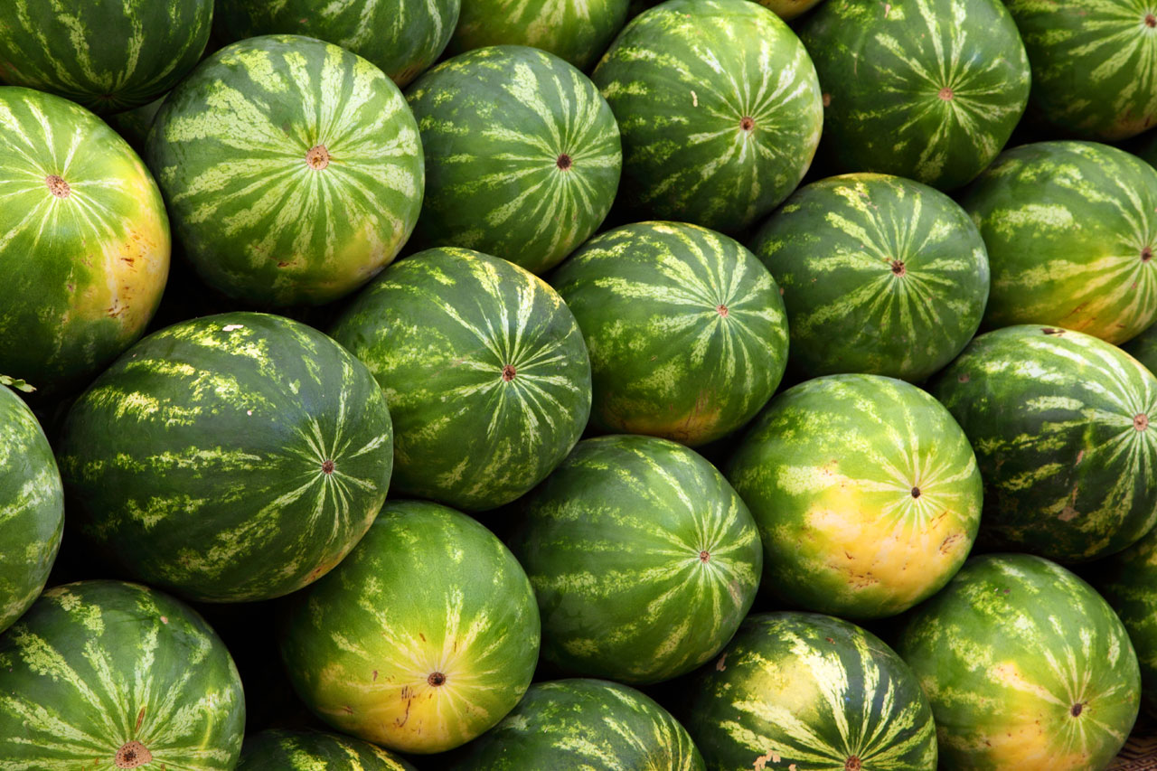Group watermelon
