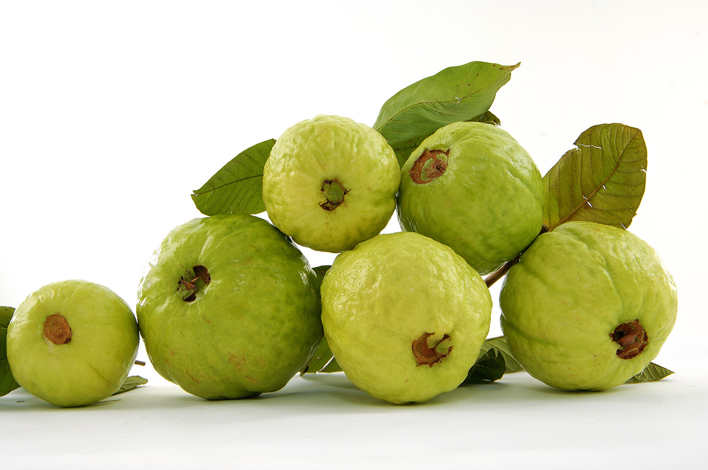 Guava fruit wallpaper