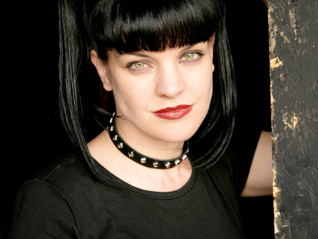 Pauley perrette american actress photos