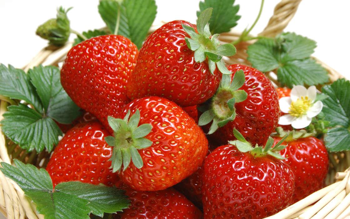 Garden fruit strawberry