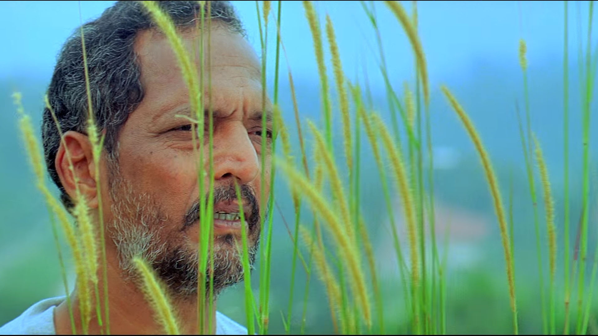 Final cut of director film stills