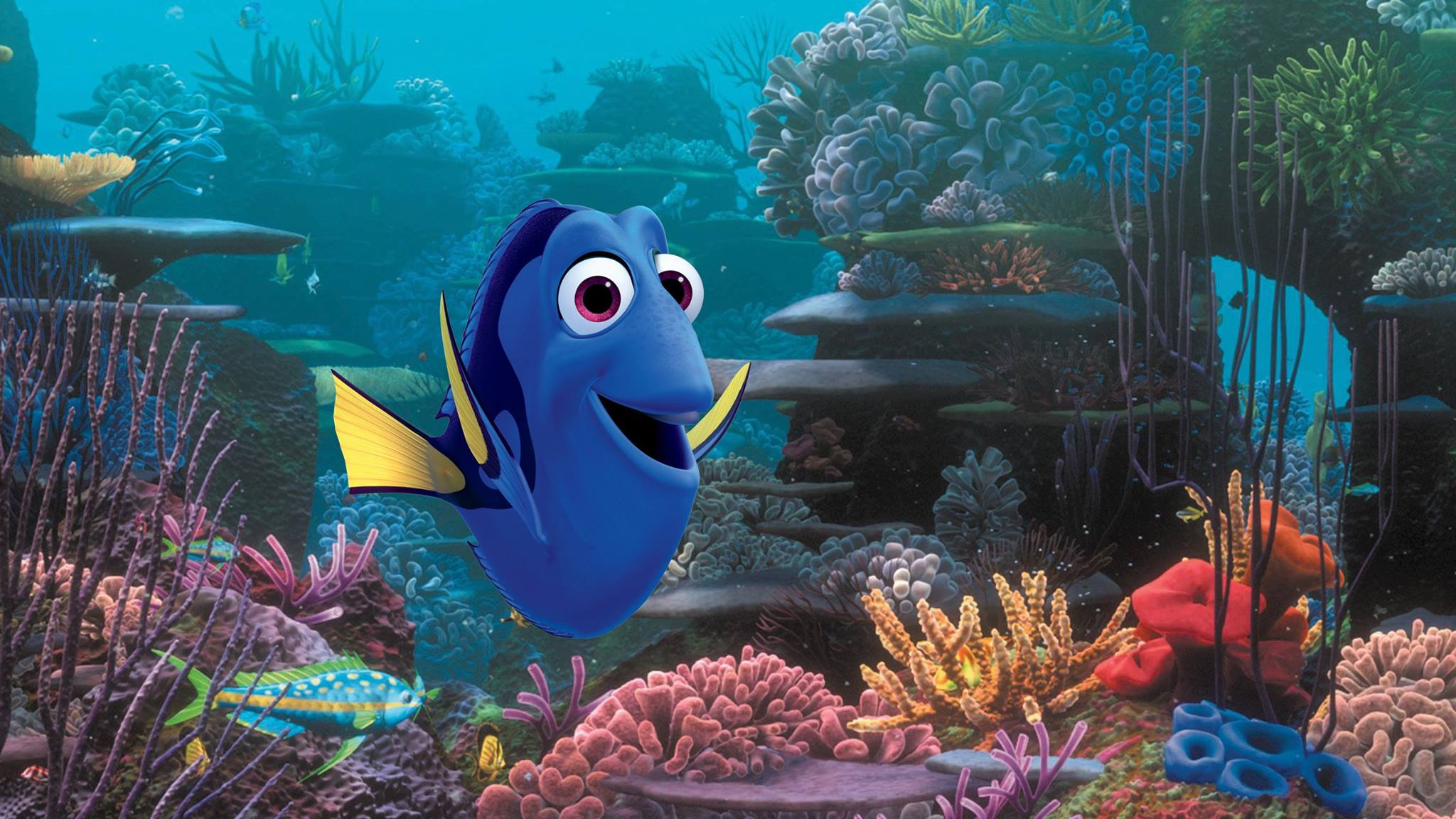 Finding dory movie photos