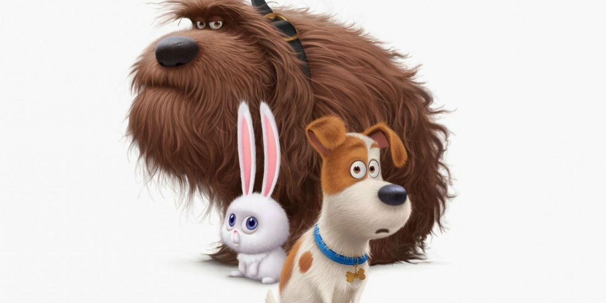 The secret life of pets film image
