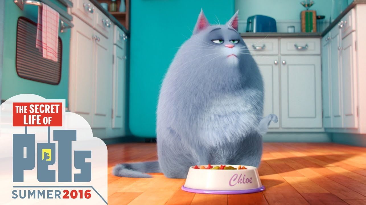 The secret life of pets film photos