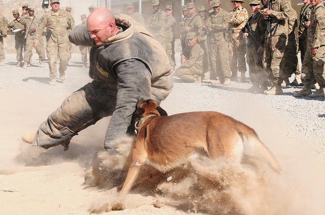 War dogs movie stills