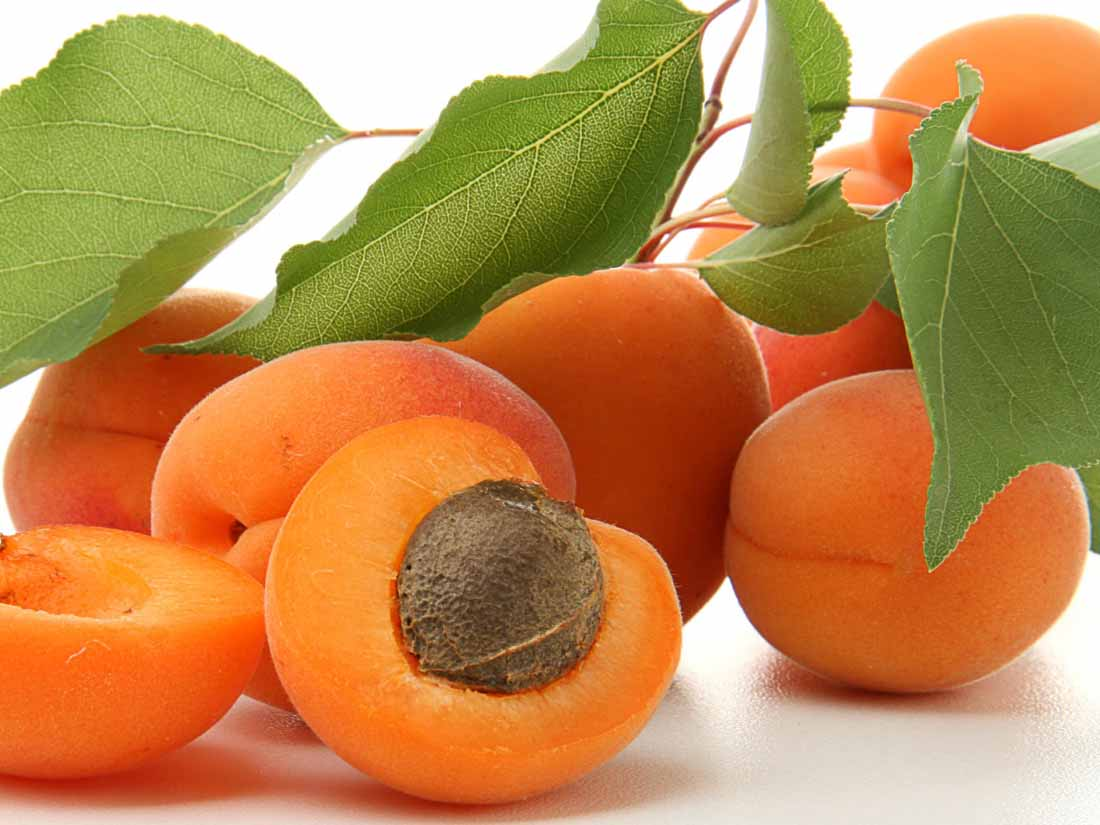 Apricot fruit pictures