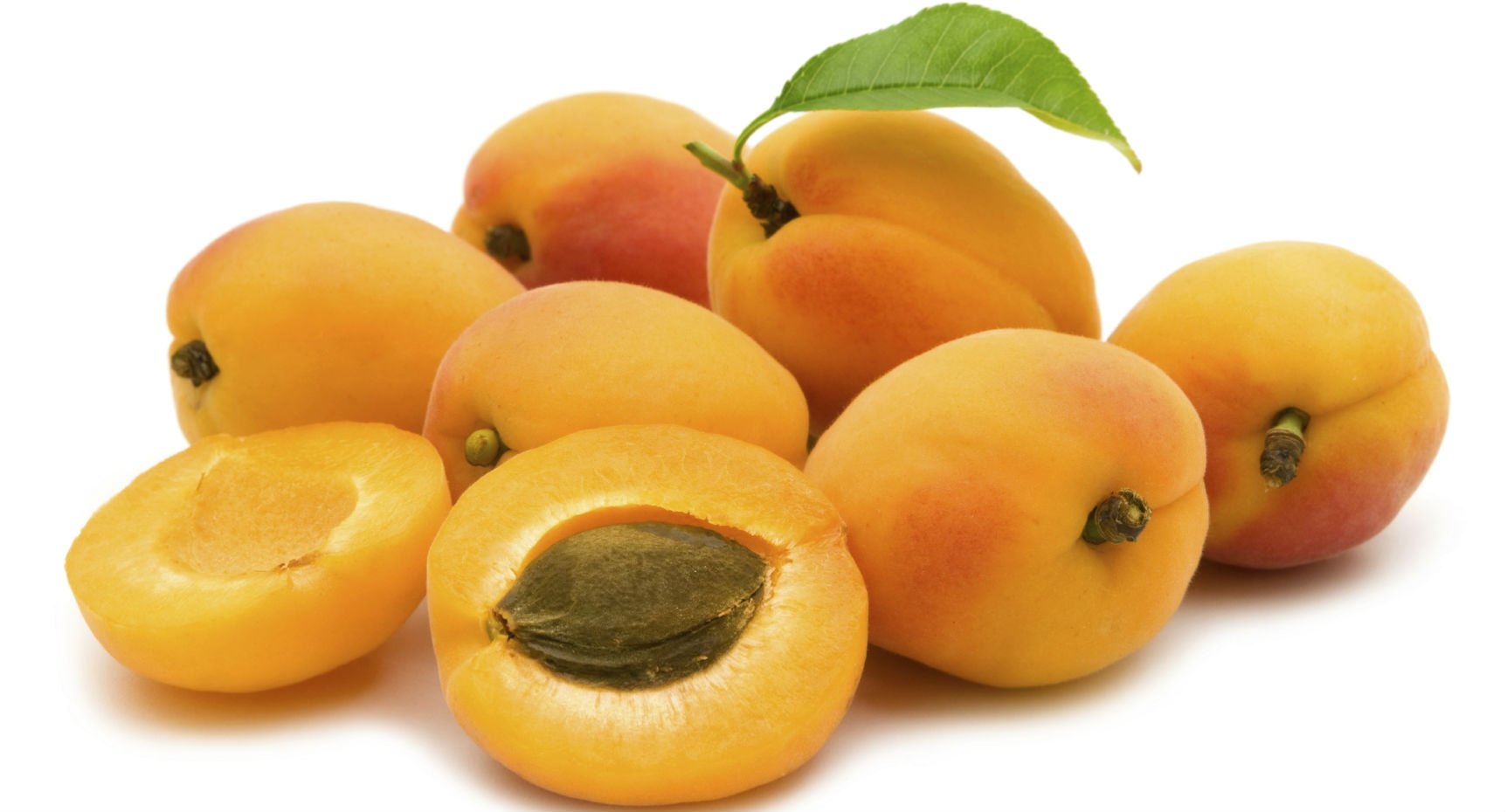 Apricot half fruit photos