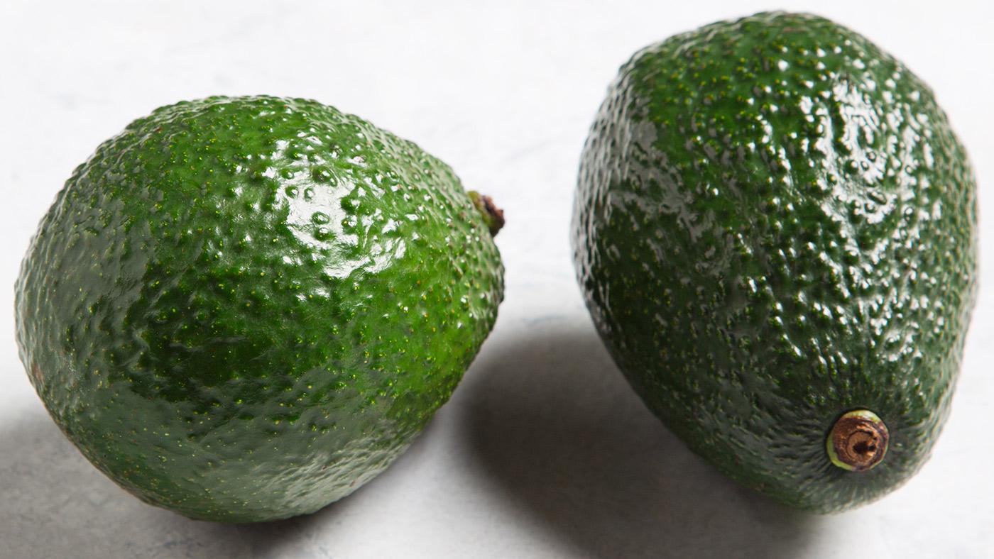 Avocado fruit wallpaper