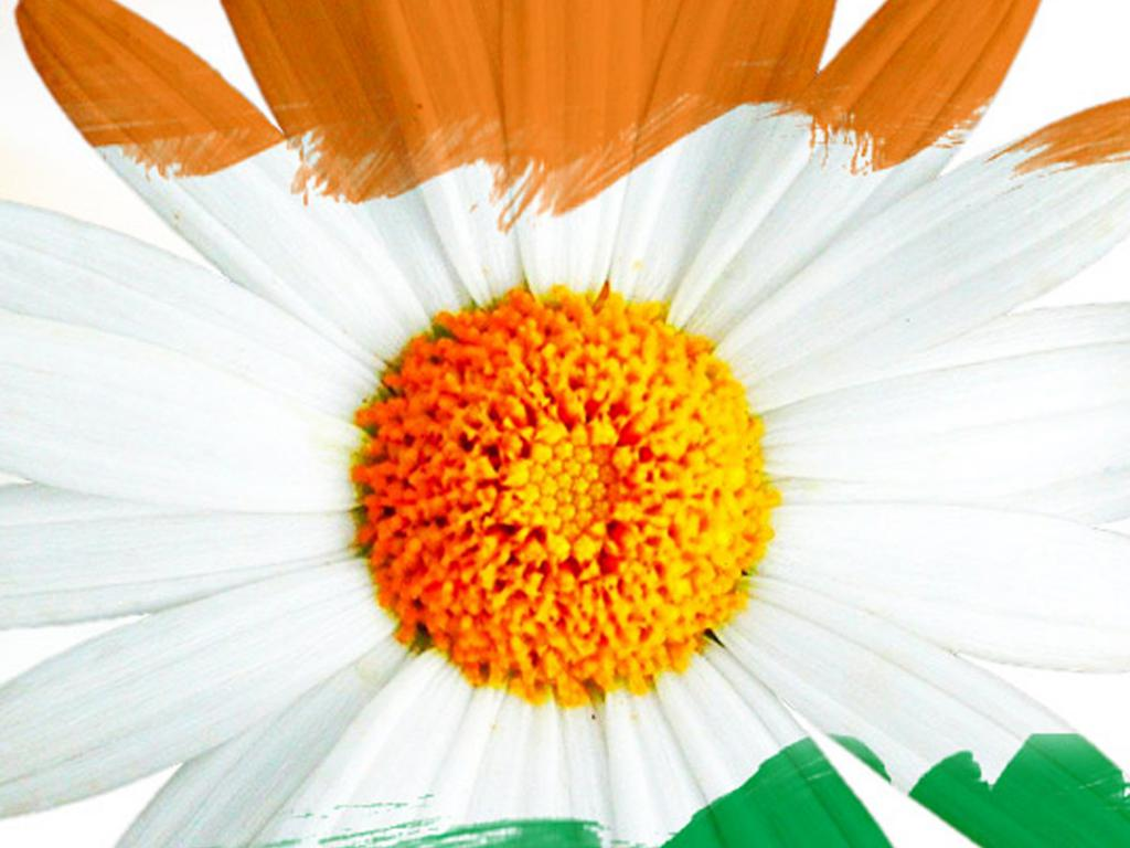 Flower independence day images