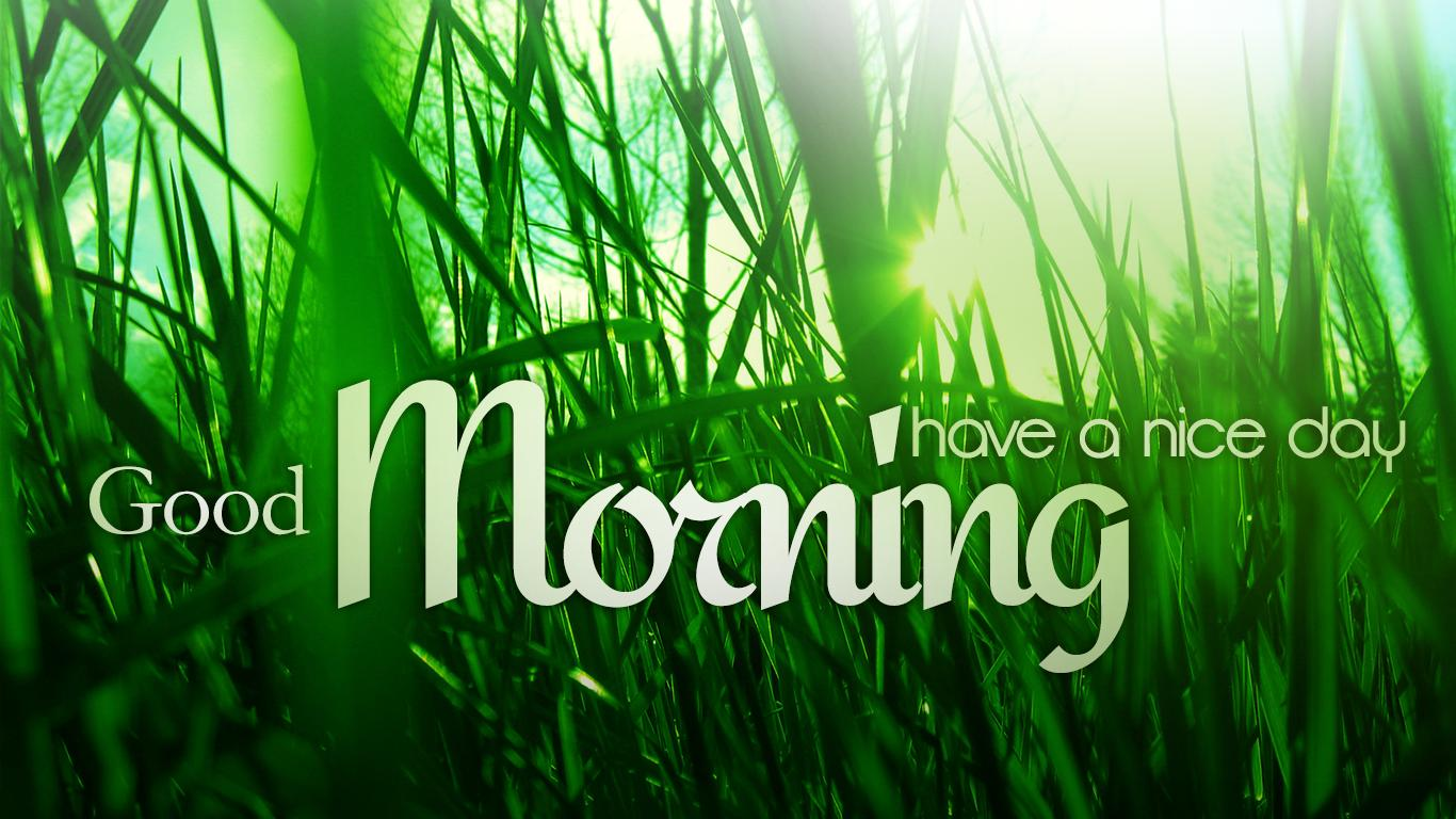 Good morning green wallpapers