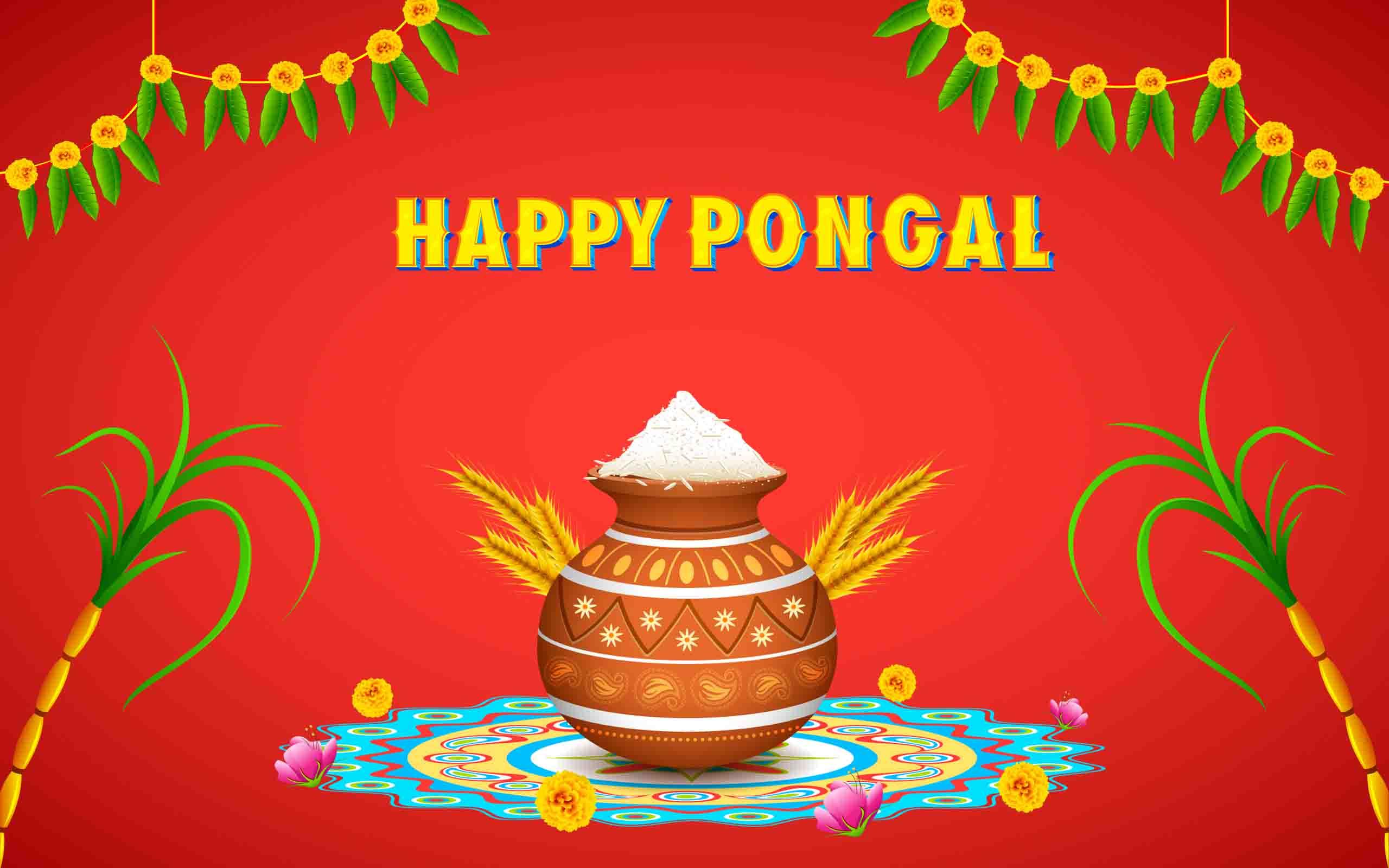 Thai pongal in tamil nadu festival pictures