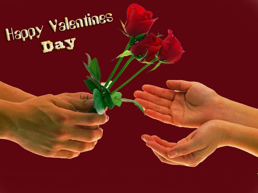 Happy valentines day rose pics