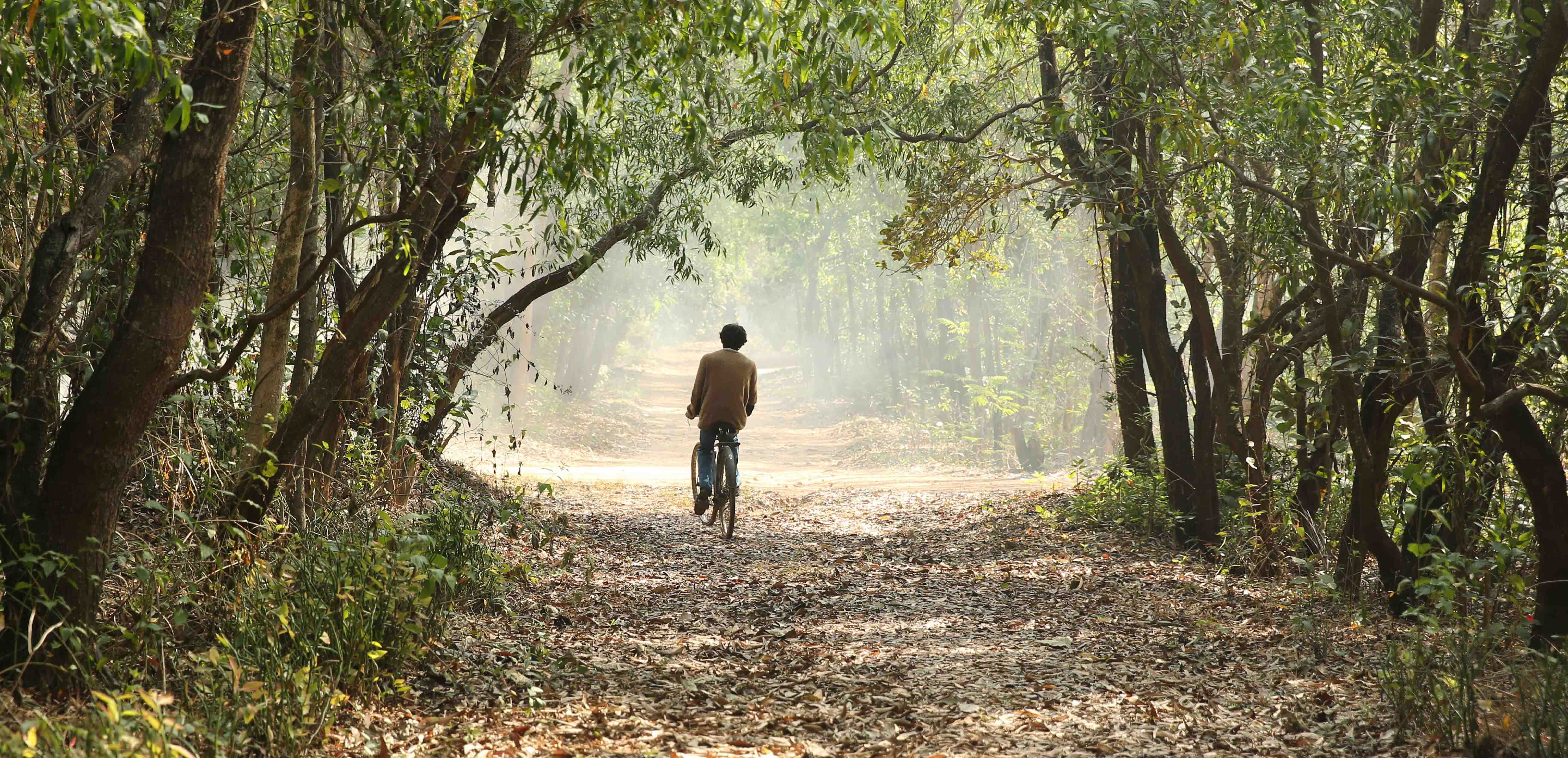 A death in the gunj movie images