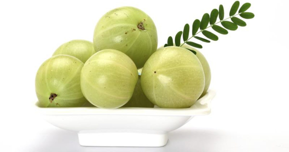 Amla fruit images