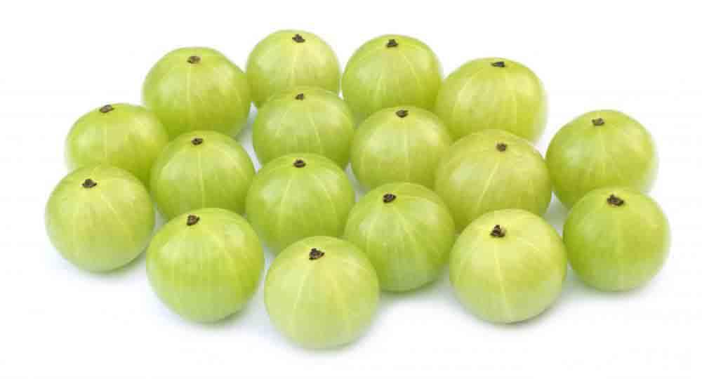 Amla fruit photos
