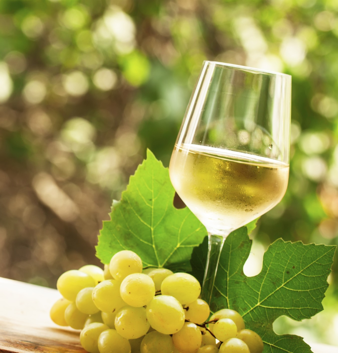 Grapes with wine and class photos