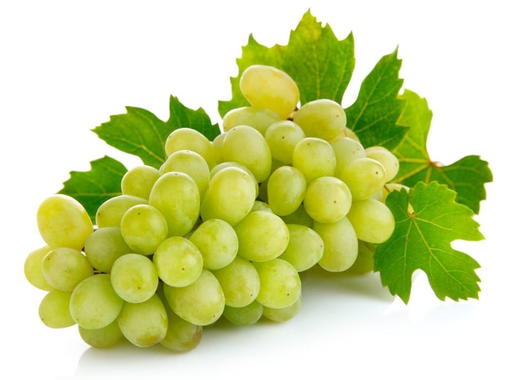 Green grapes pictures
