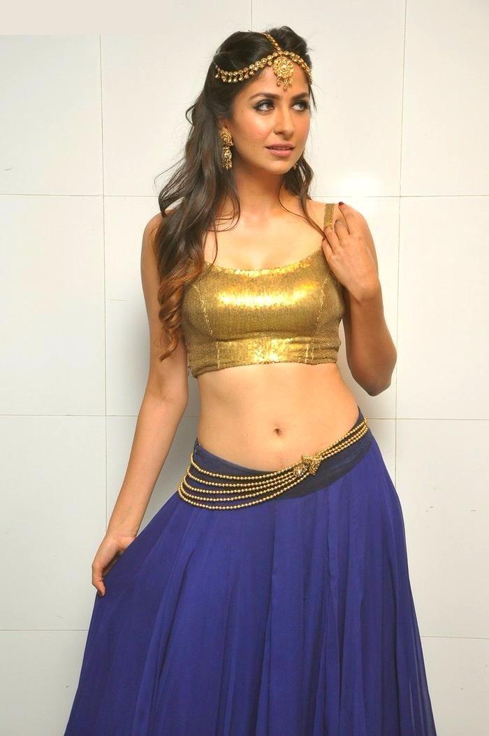 Malvika raaj movie promotions photos