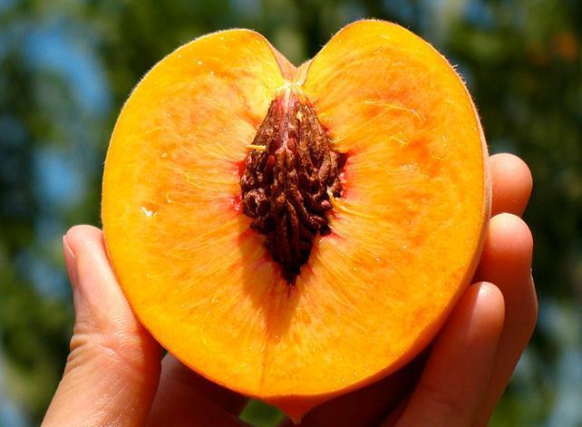 Peach half fruit photos
