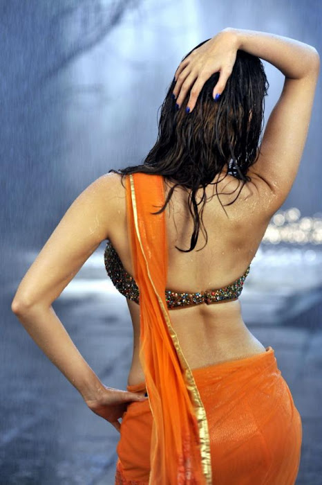 Tamanna backless hot orange saree wallpaper
