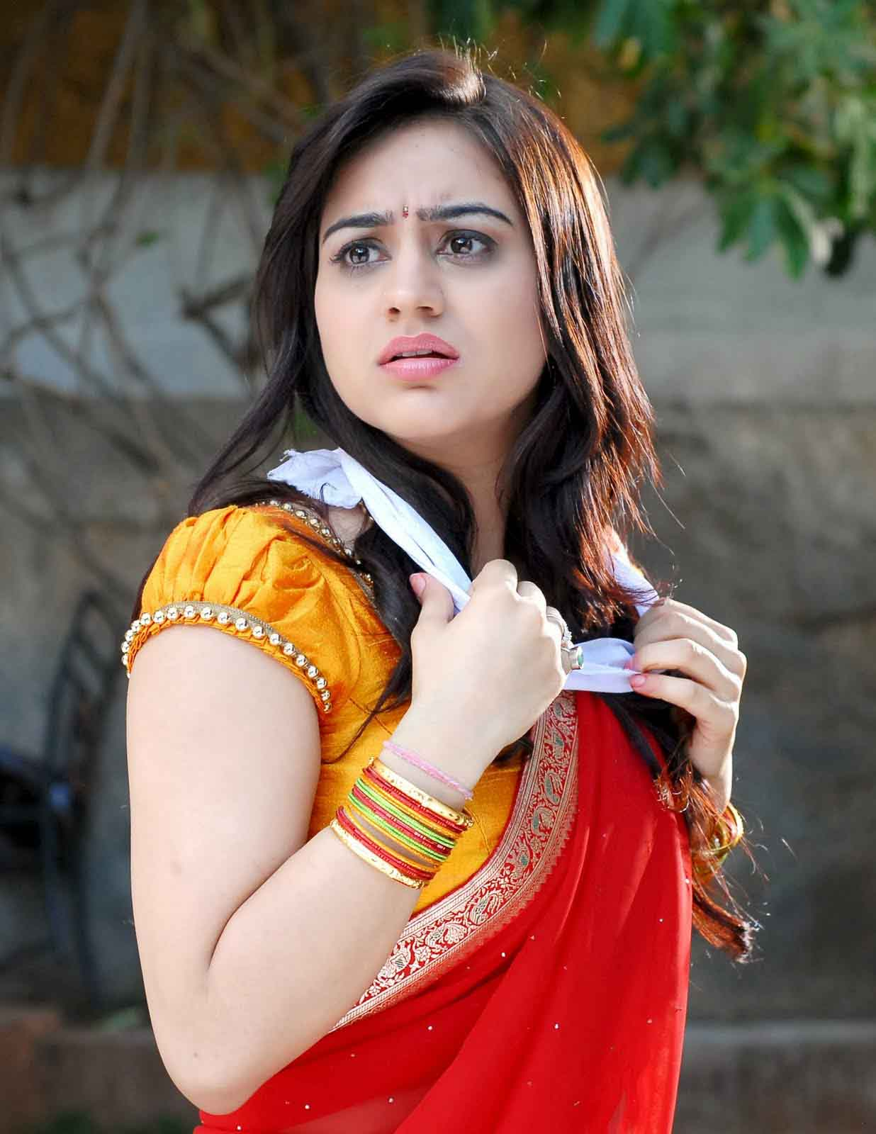 Aksha pardasany red saree pictures
