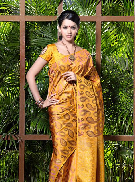 Bhavana saree modeling photos