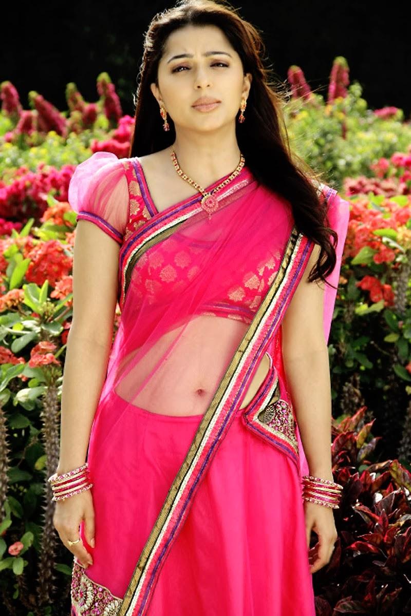 Bhoomika chawla half saree photos
