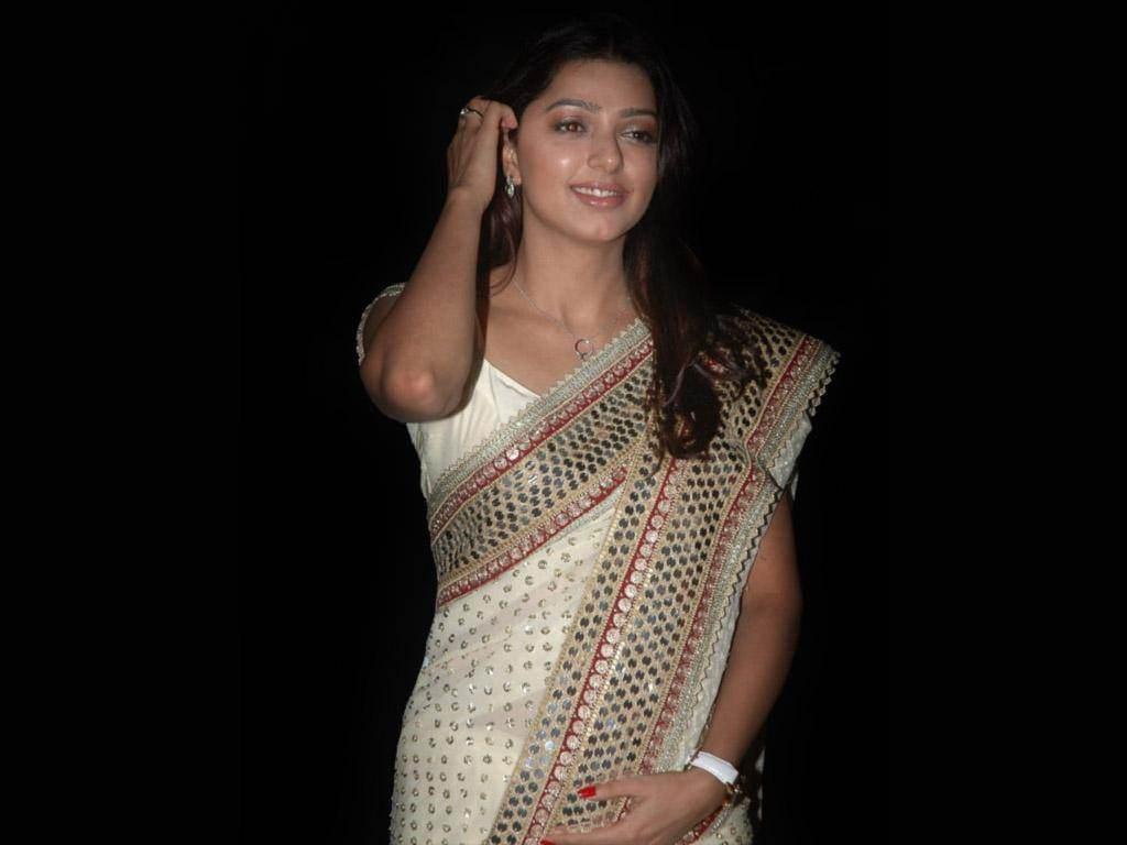Bhoomika chawla saree in night photos