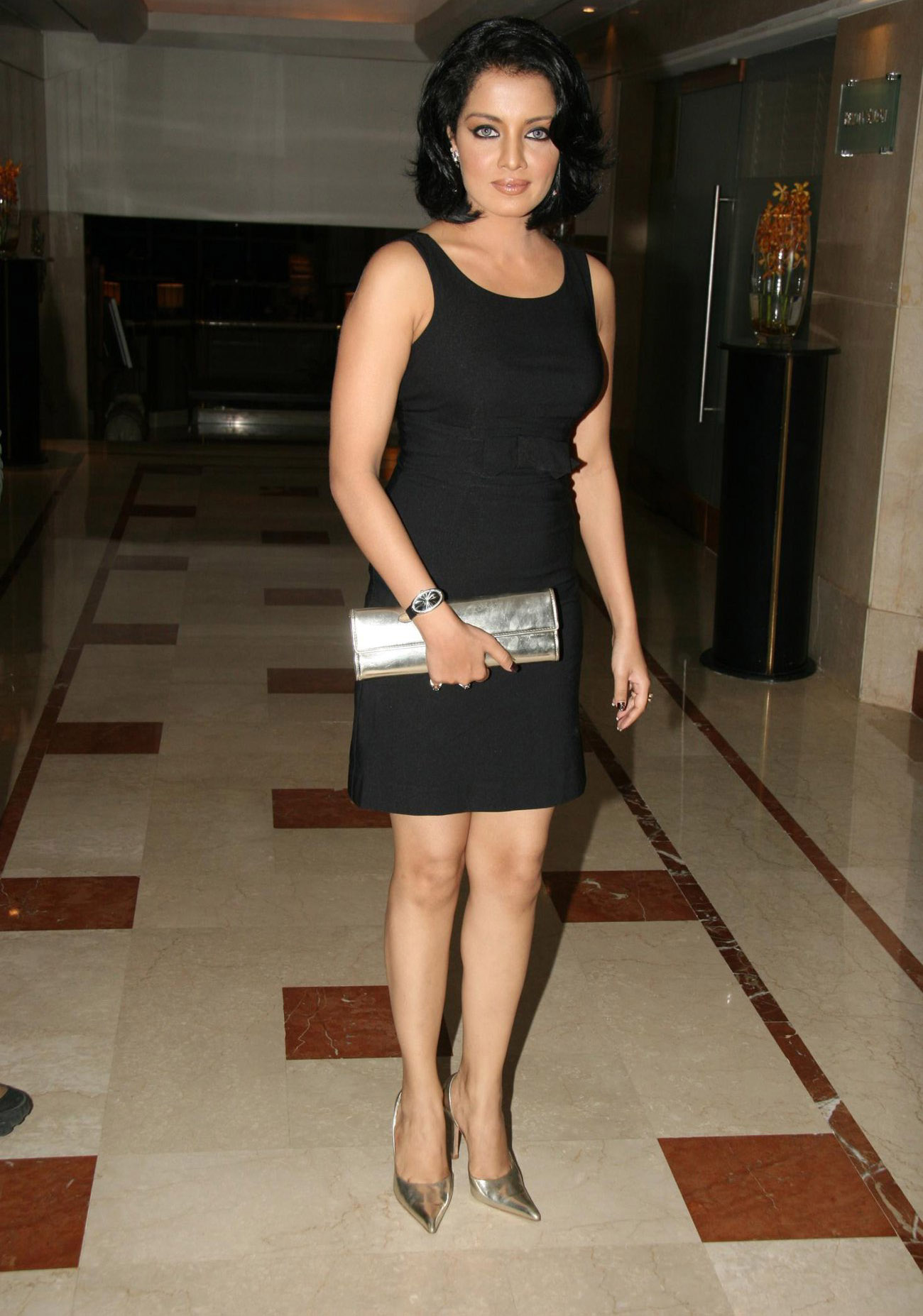 Celina jaitley mini dress photos