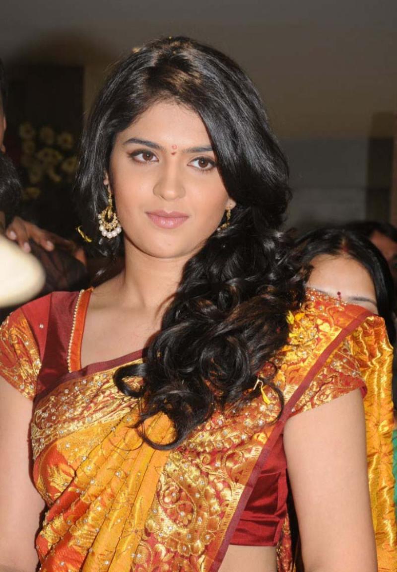 Deeksha seth function saree photos