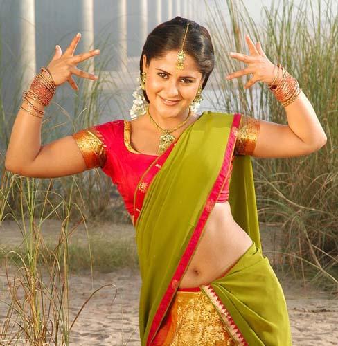 Farzana saree photos