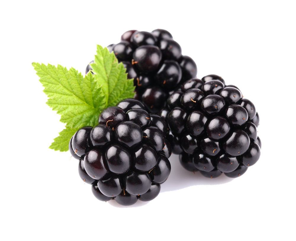 Blackberry fruit images