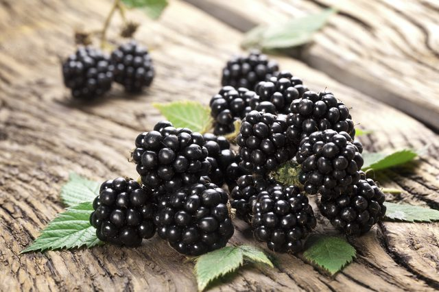 Blackberry fruits photos