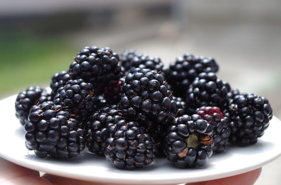 Blackberry fruits wallpapers