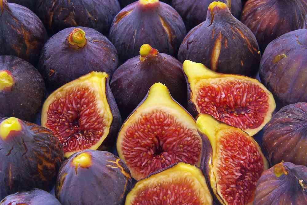 Figs fruits photos