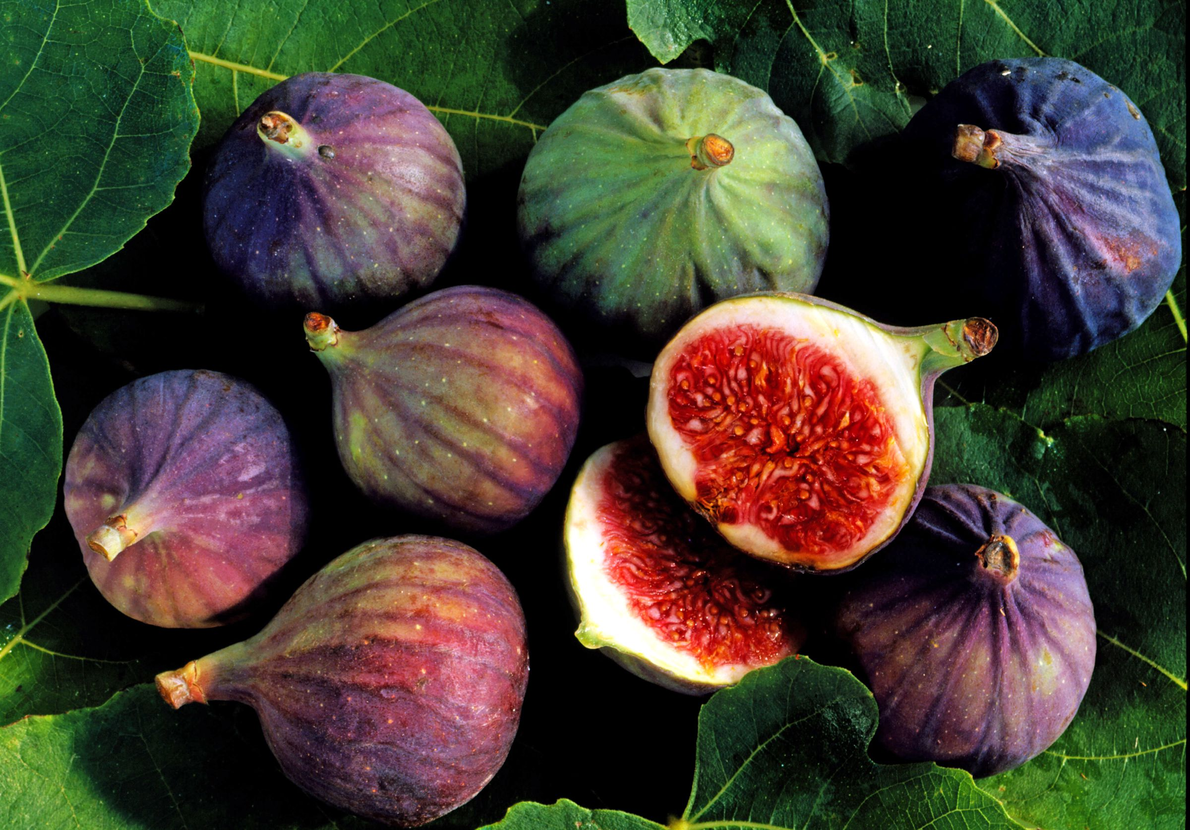 Figs fruits wallpapers