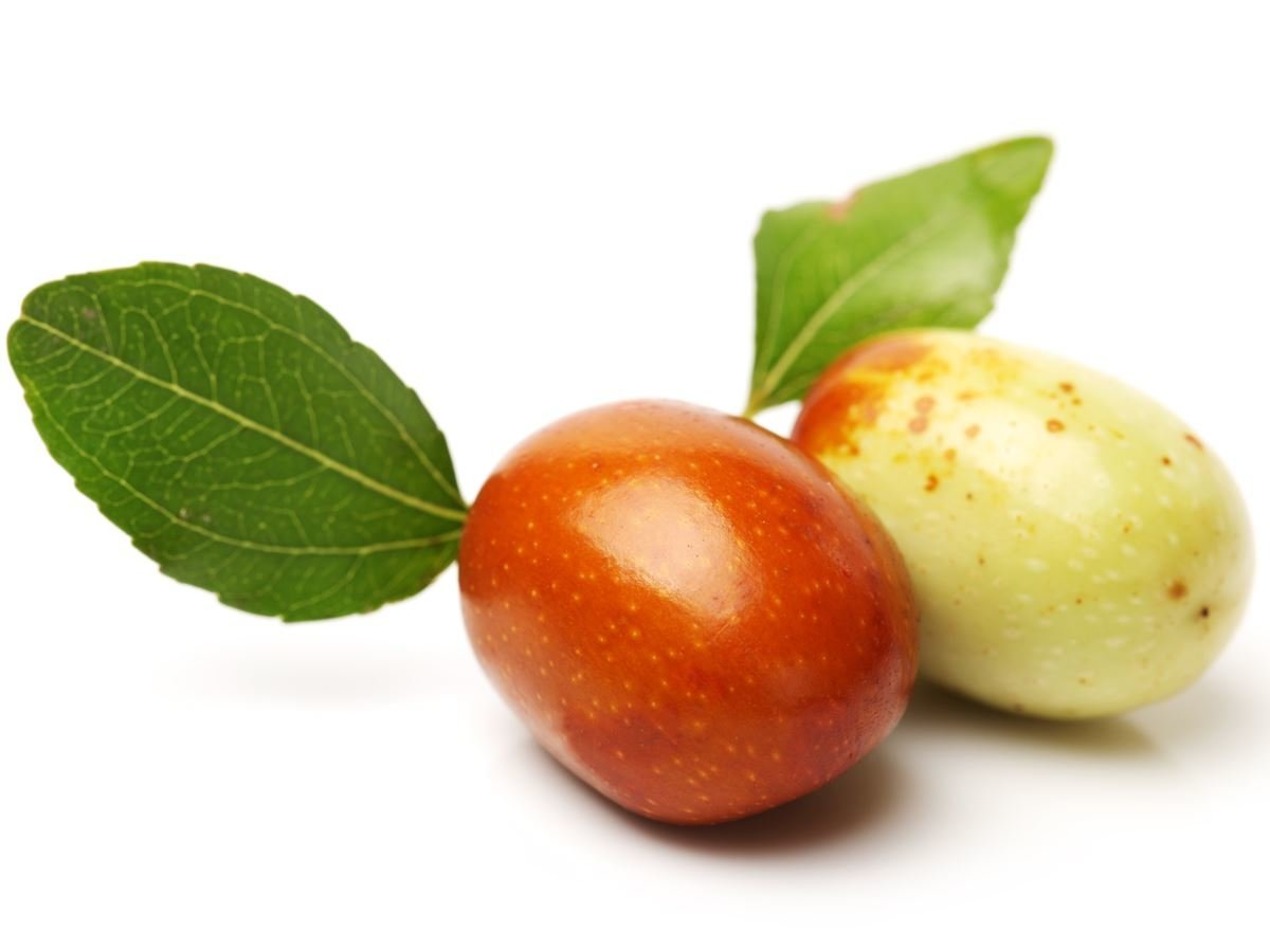 Indian jujube pictures