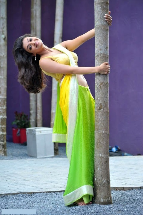 Kajal agarwal green with yellow saree beautiful pictures