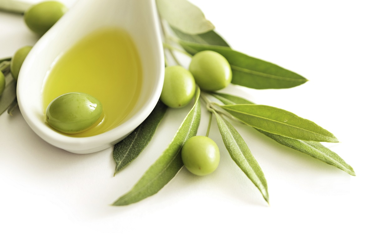 Olive fruits gallery