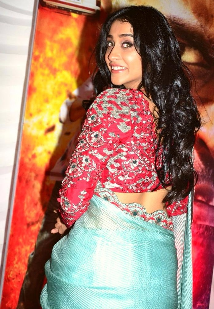 Regina cassandra saree modeling image
