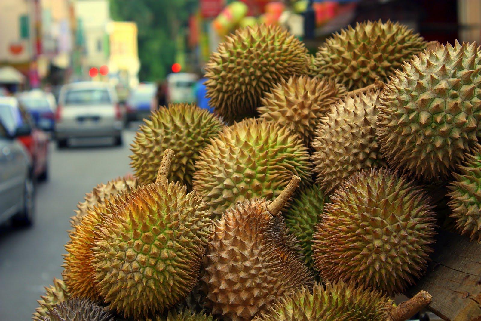 Durian fruit photos