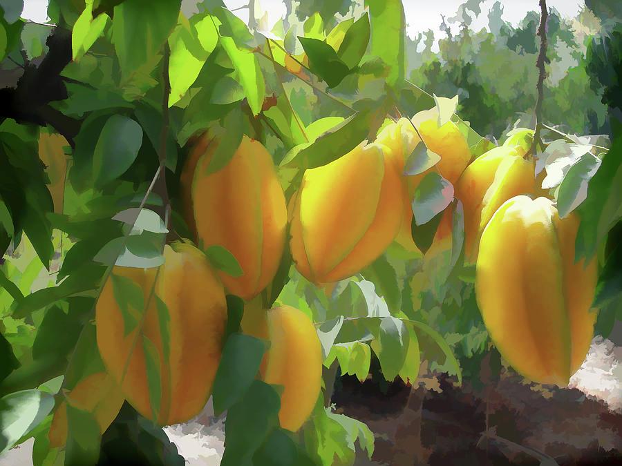 Carambola fruit photos