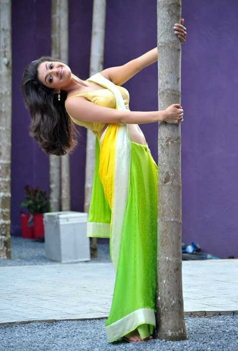 Kajal agarwal green and yellow saree photos