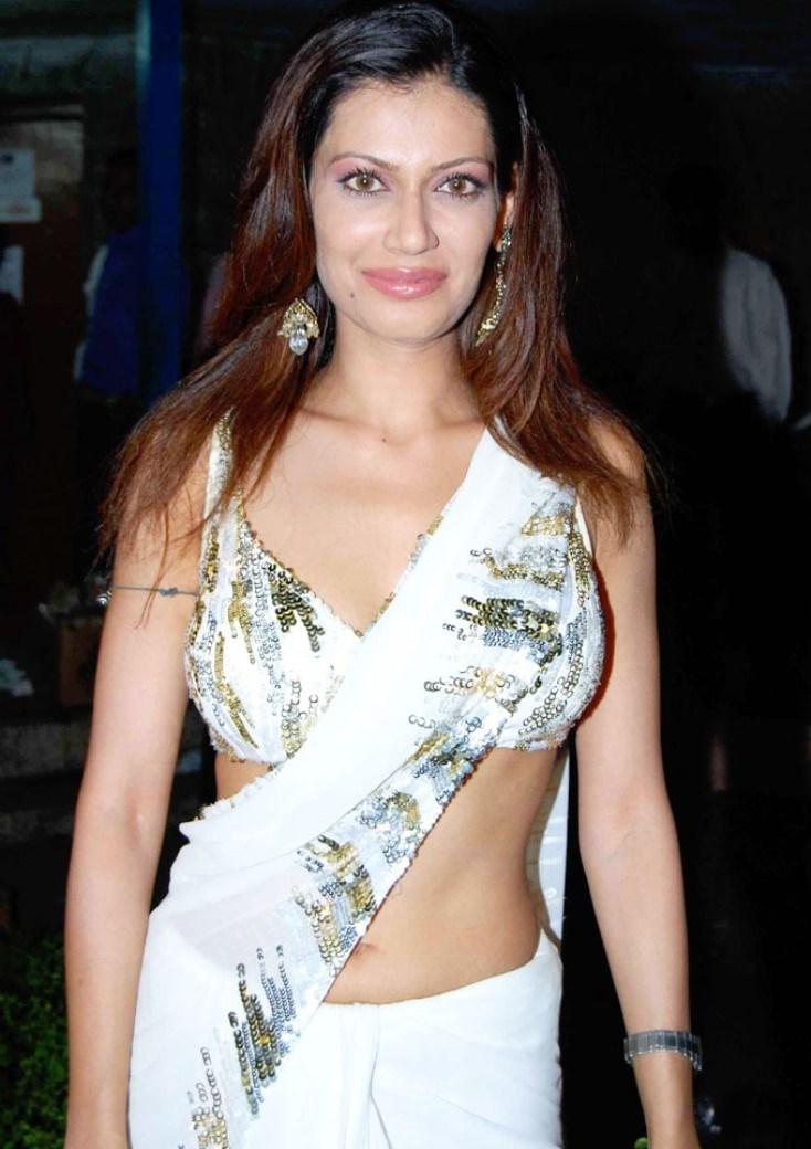 Payal rohatgi saree photos