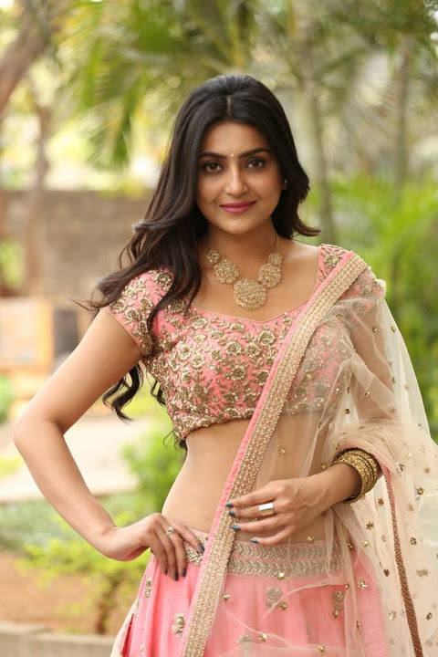 Avantika mishra half saree cute photos