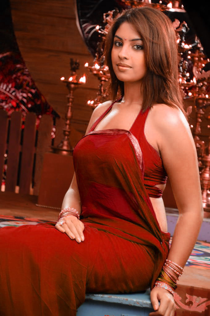 Richa gangopadhyay half saree photos