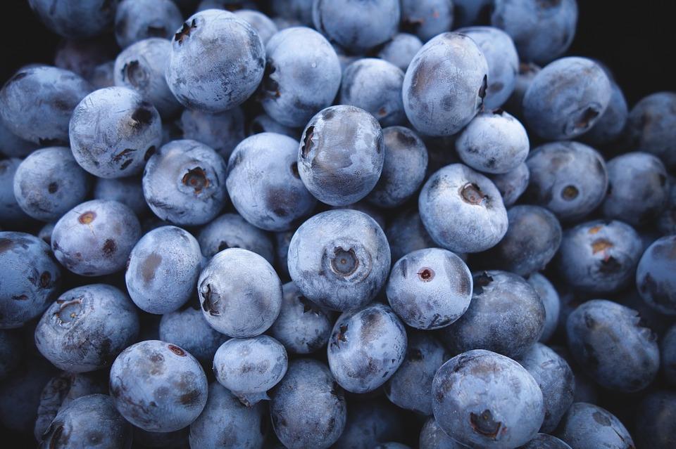 Many blueberry fruit fotos