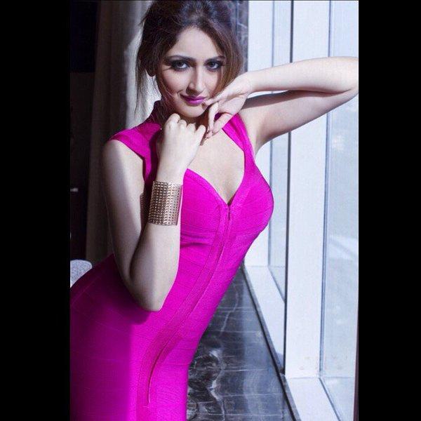 Sayyeshaa saigal actress glamour stills