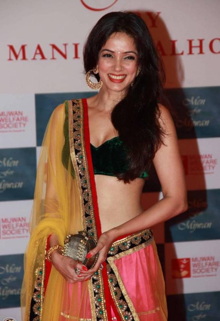 Vidya malvade half saree photos